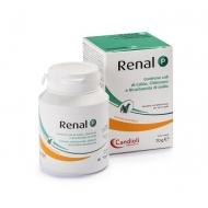 RENAL ADVANCE GATTI PASTA 15 ml