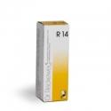 DR. RECKEWEG R14 GOCCE  50 ml